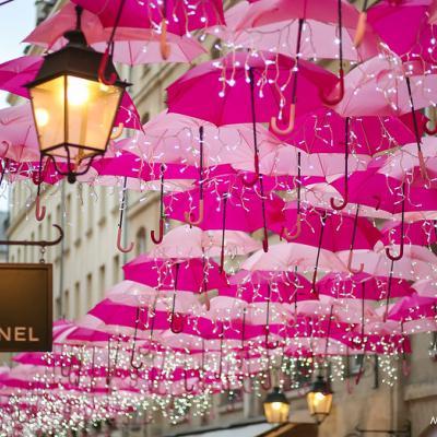 The Pink Umbrellas of Paris